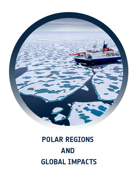 Polar regions and global impacts